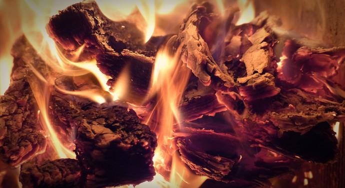 Le chauffage au bois : quel type de bois ?